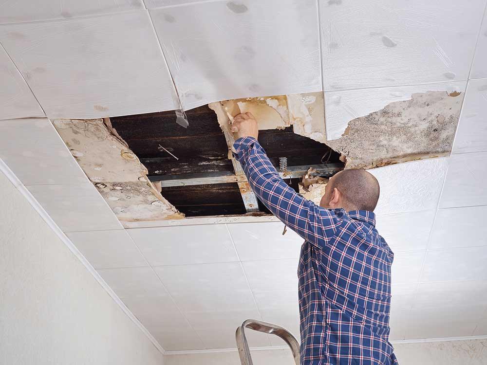 Ceiling Leak Repair Charlotte SC